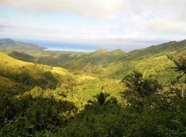 World Heritage Site Mt. Hamiguitan receives forest protection boost as communities engage in sustainable livelihood beekeeping