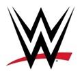 WWE®& TIKTOK LAUNCH SUMMERSLAM® RING ANNOUNCER SEARCH